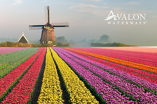8D Tulip Time in Holland & Belgium | Mar, April 2021 | Free Upgrade to Suite