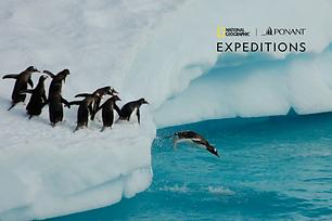 12D Emblematic Antarctica with National Geographic | 19Feb 2021 & 30Dec 2021