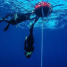 serbest dalış eğitimi