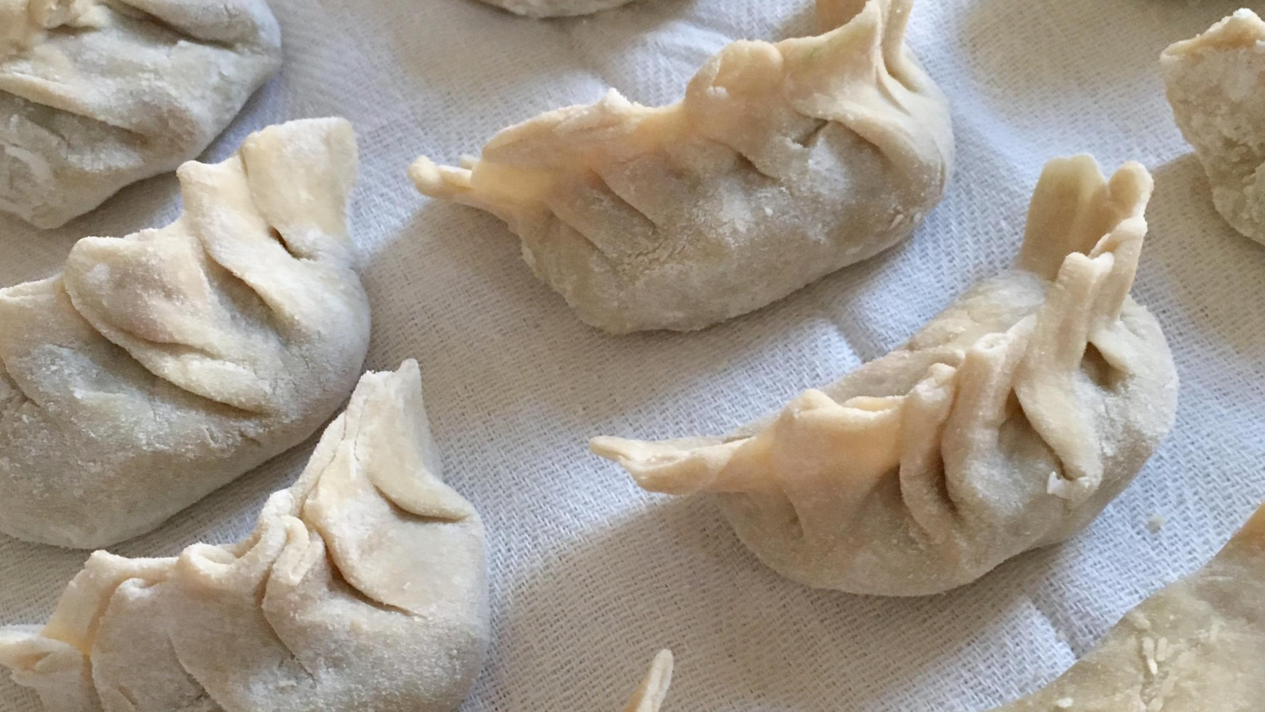 homemade dumplings, 100 days of pasta