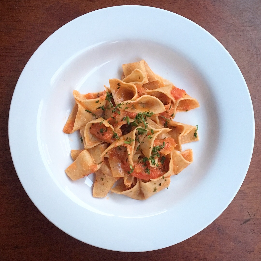 whole wheat double shovels with tomatoes and ricotta, 100 days of pasta_