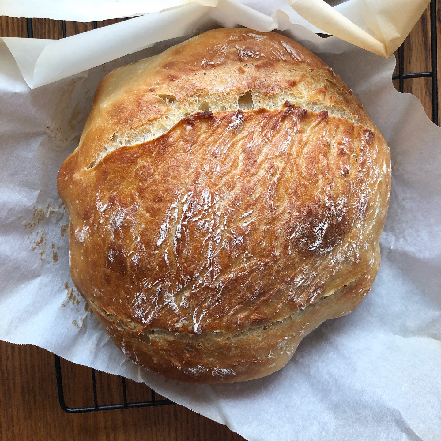 week one of sourdough bread making on 100 days of pasta