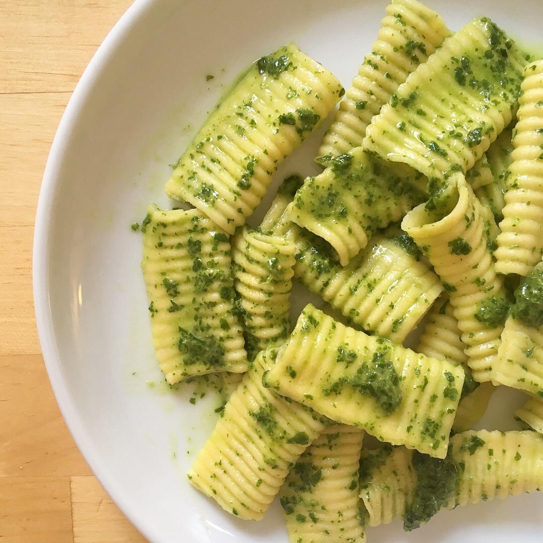 closeup of istrice with pesto, 100 days of pasta_