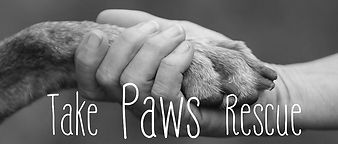 TAKE PAWS RESCUE.jpg