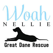 WOAH NELLIE GREAT DANE RESCUE.jpg