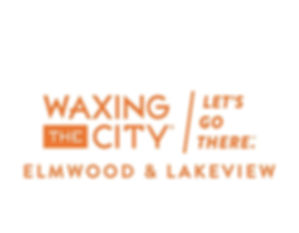 WTCLetsGoThereElmwood&Lakeview.jpg