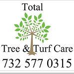 total tree.jpg