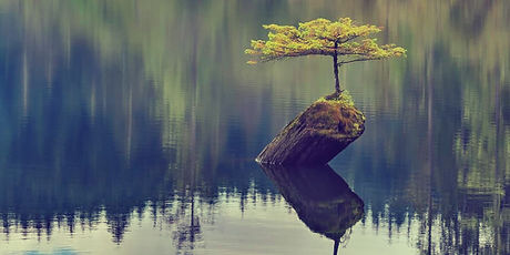 resilience-in-positive-psychology-.jpg