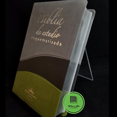 Biblia Reina Valera 1960 de Estudio Esquematizada