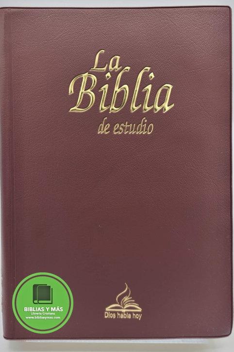 SANTA BIBLIA CATOLICA DIOS HABLA HOY DE ESTUDIO VINIL ROJO