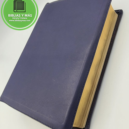 Biblia De Estudio Letra Grande Diario Vivir Piel 100% Genuina Azul RVR1960