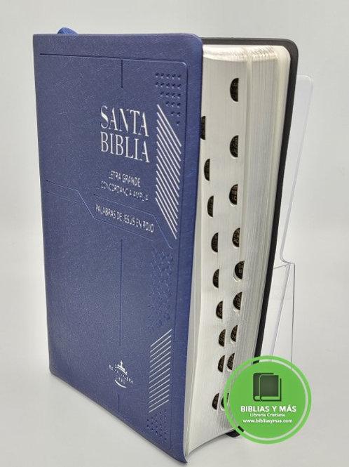 Biblia Reina Valera 1960 Letra Grande Concordancia Amplia AZUL
