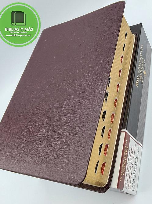 Biblia de Estudio del Expositor Jimmy Swaggart Piel Index