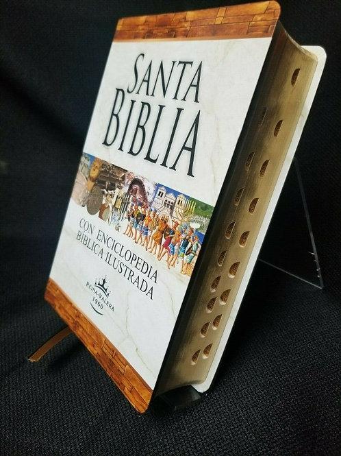BIBLIA REINA VALERA LETRA GRANDE CON ENCICLOPEDIA ILUSTRADA INDEX