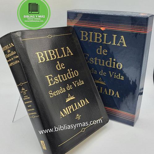 Biblia de estudio Senda de Vida Reina Valera 1960 Piel Negro Index