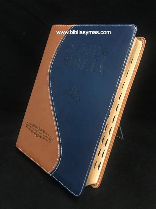 B. Antigua Version 1909 Letra Gigante Duotono Cafe Azul con Index