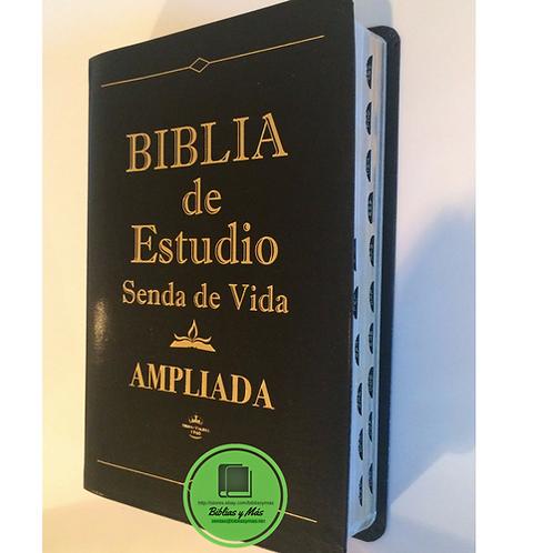 Biblia Senda de Vida Reina Valera 1960 Piel Negro Index