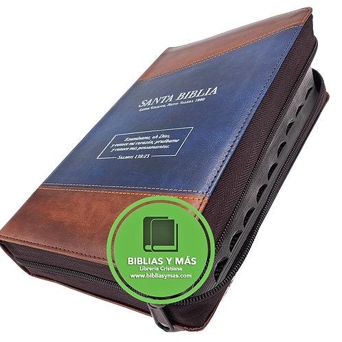 Biblia Letra Gigante Reina Valera Duotono Azul Marron