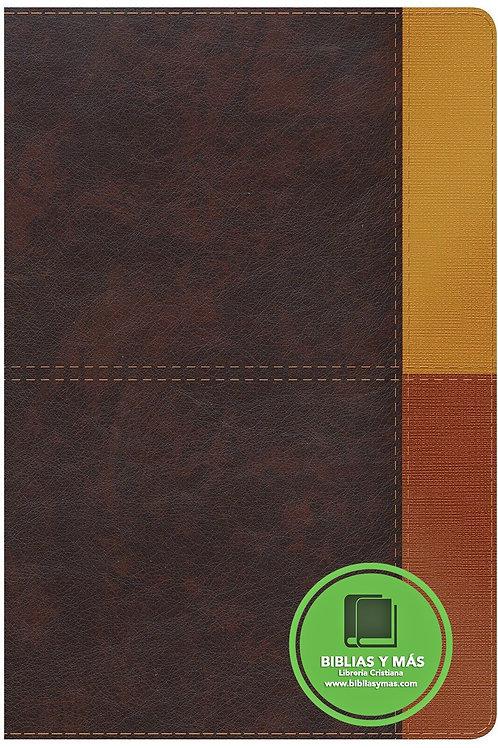 NIV Rainbow Study Bible Brown LeatherTouch