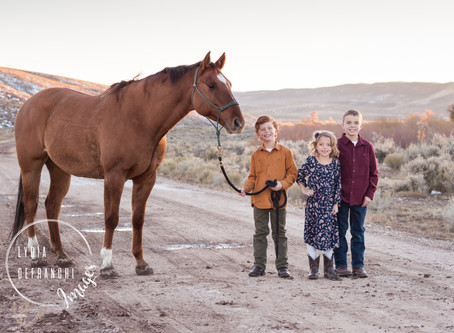The Horses Are Part of the Family Too!