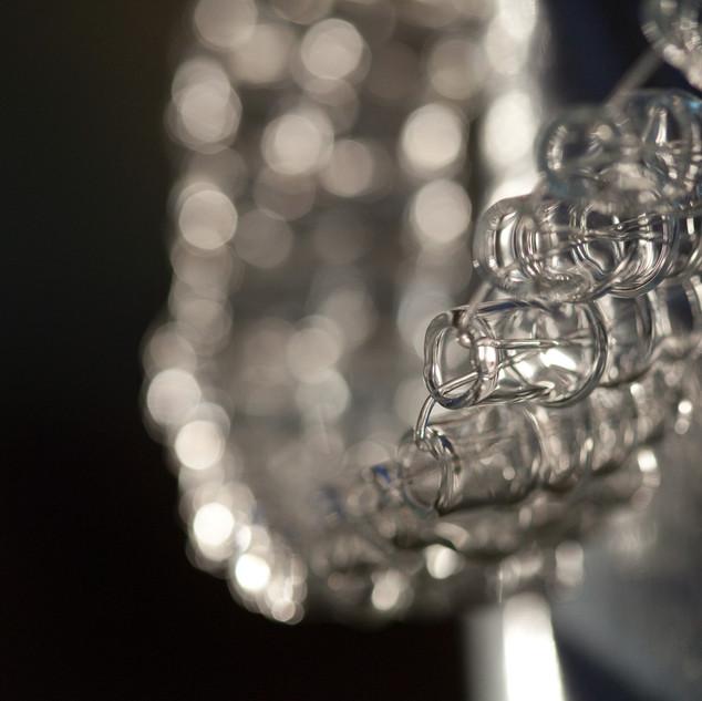 Elizabethan Collar - detail