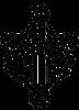 NG_Logo_Bitmap.png