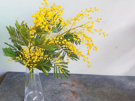 2月のお届け花