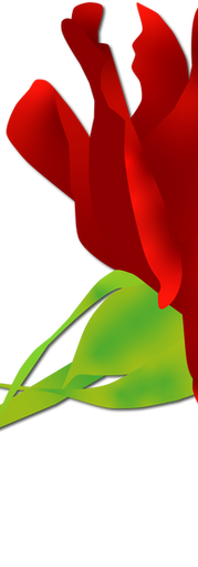 THE ROSE.RGB.DS.png