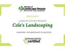 Trophy Leadership Award Certificate (2).