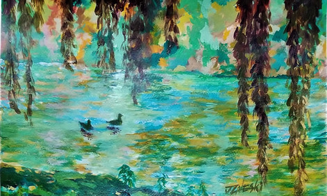 Willow trees and ducks