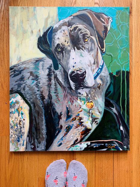 Modern Acrylic Dog Portrait.jpg