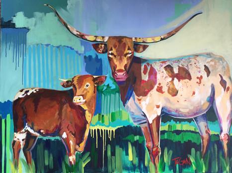 Longhorn Bulls