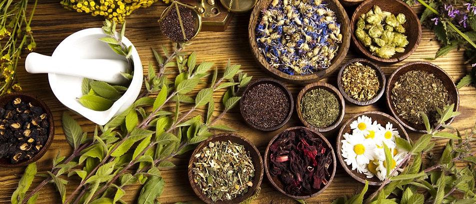Phytothérapie plantes medicinales