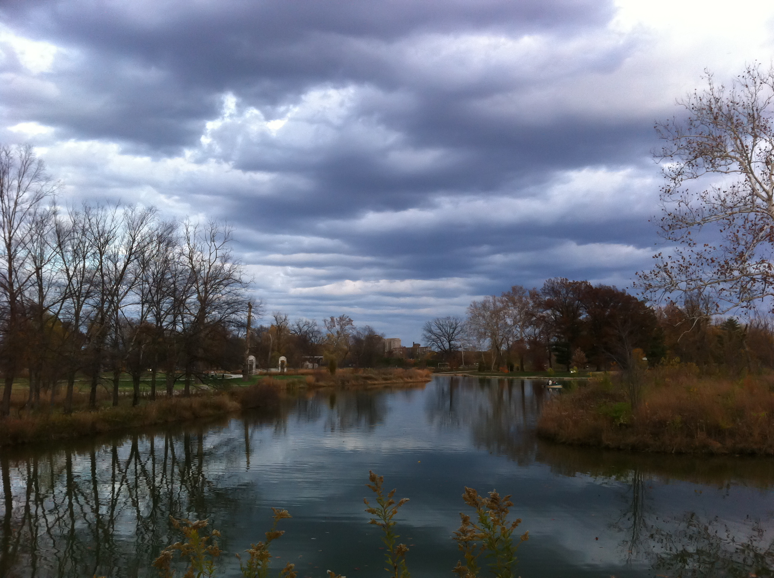 Stroll in Forest Park 2011-15