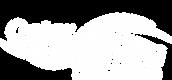 QSA Logo white .png