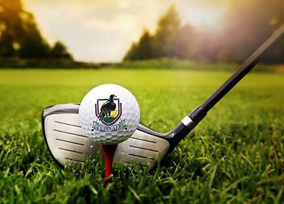 Golf ball with Erinvale crest logo and golf club in the background.