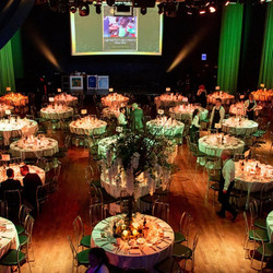 Mustardseed Luncheon in Mansion House 2019