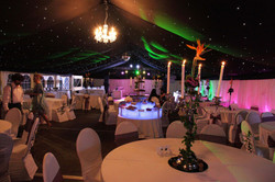 Private 50th party event