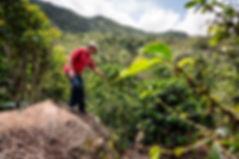 Coopedota Costa Rica