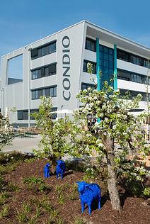 CONDIO GmbH