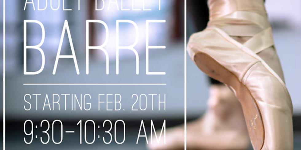 Adult Ballet Barre Series