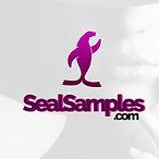 SealSamples copy.jpg