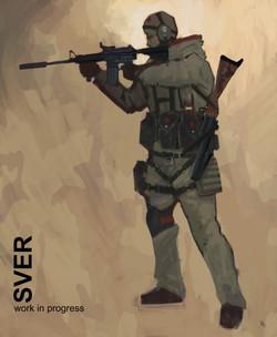sver_concept
