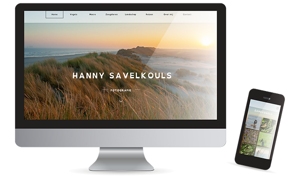 website-hannysavelkouls.png