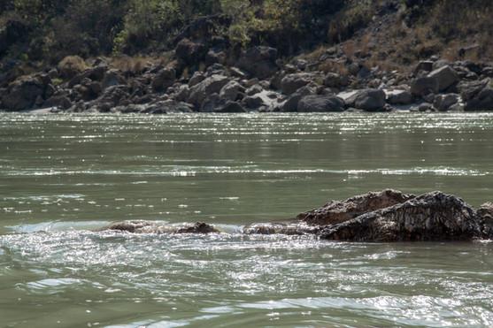 Mata Ganga