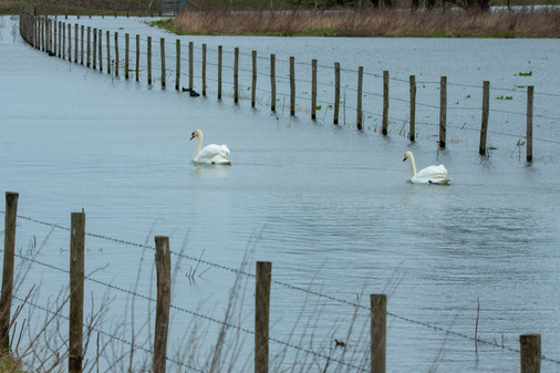 Hoog water, Munnikenland, 15 mrt 20