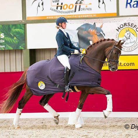 Horsefood Dressuur Talent 2019 →