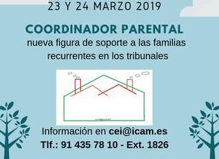 Curso sobre el coordinador de parentalidad: nueva figura de soporte a las familias recurrentes en lo