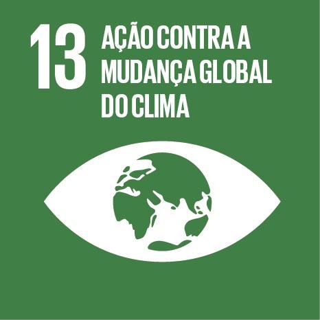 ODS busca combater a mudança climática e seus impactos