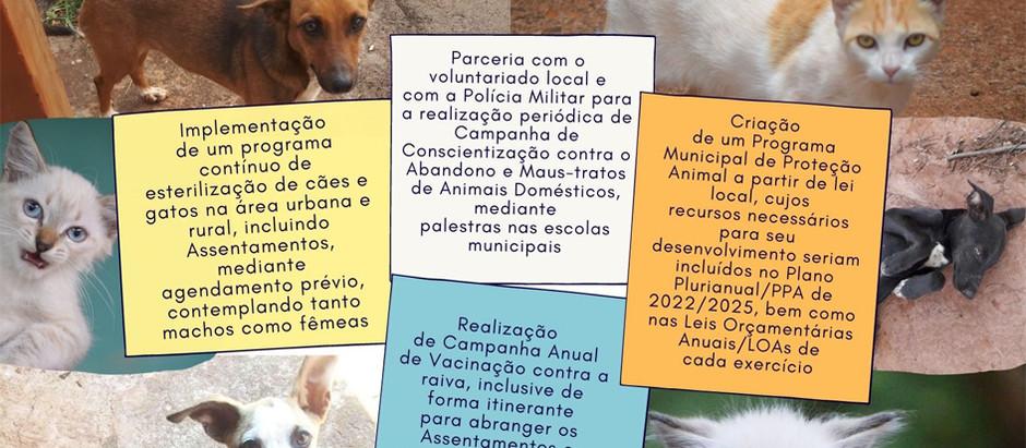 Carta de Compromissos com a causa animal será encaminhada aos candidatos a prefeito de Motuca